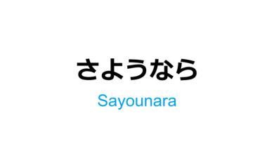 """Expresión de despedida en japonés """"sayounara"""""""