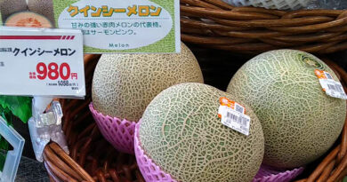 El precio de la fruta en Japón
