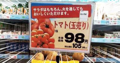 El Precio de la Verdura en Japón